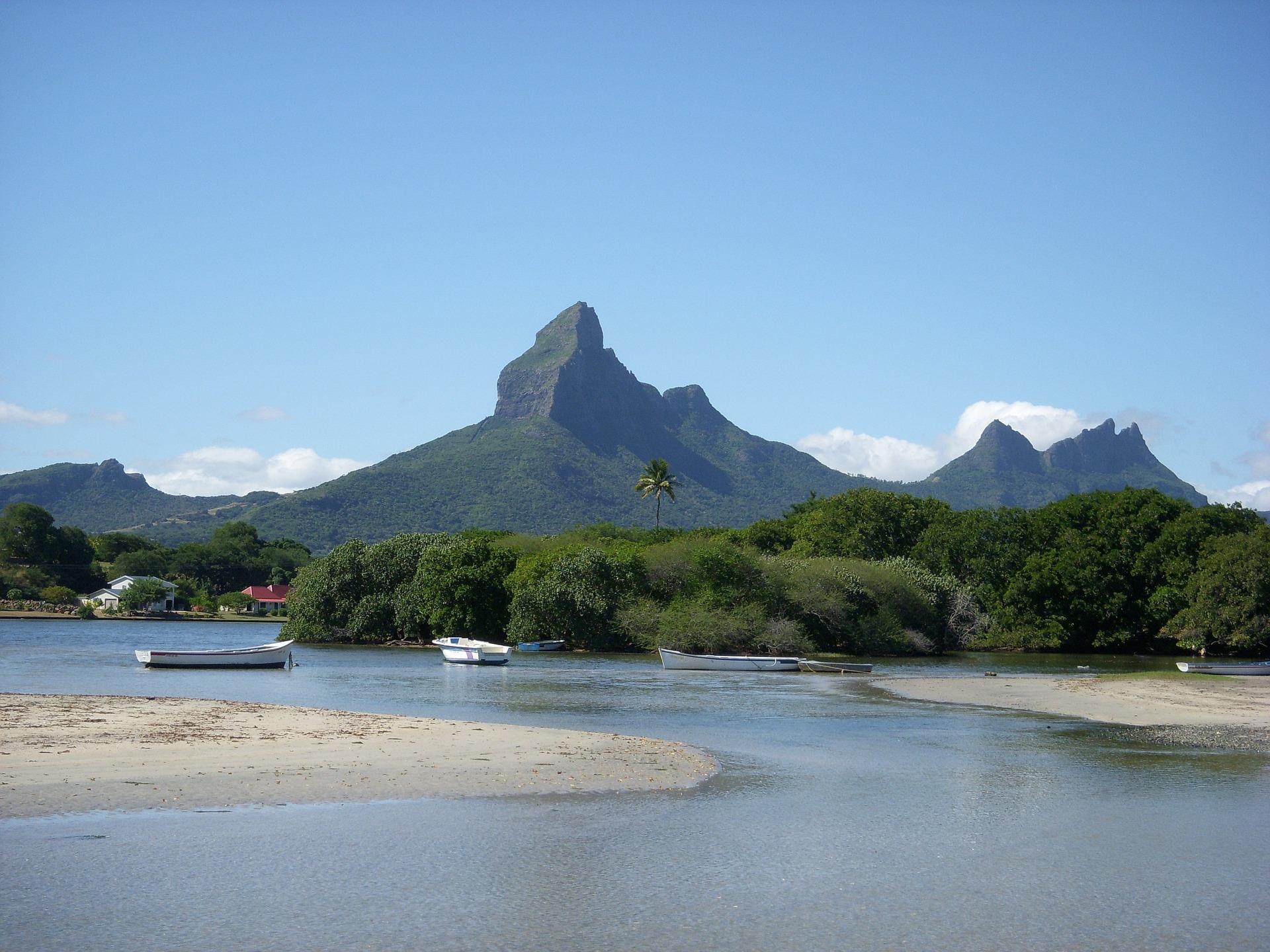 Auf Safari im schönen Südafrika - Bild