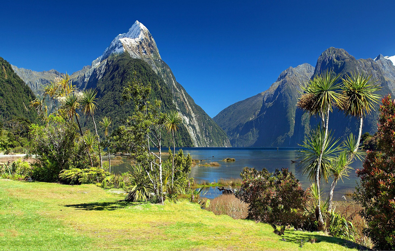 Traumziel Neuseeland - Bild