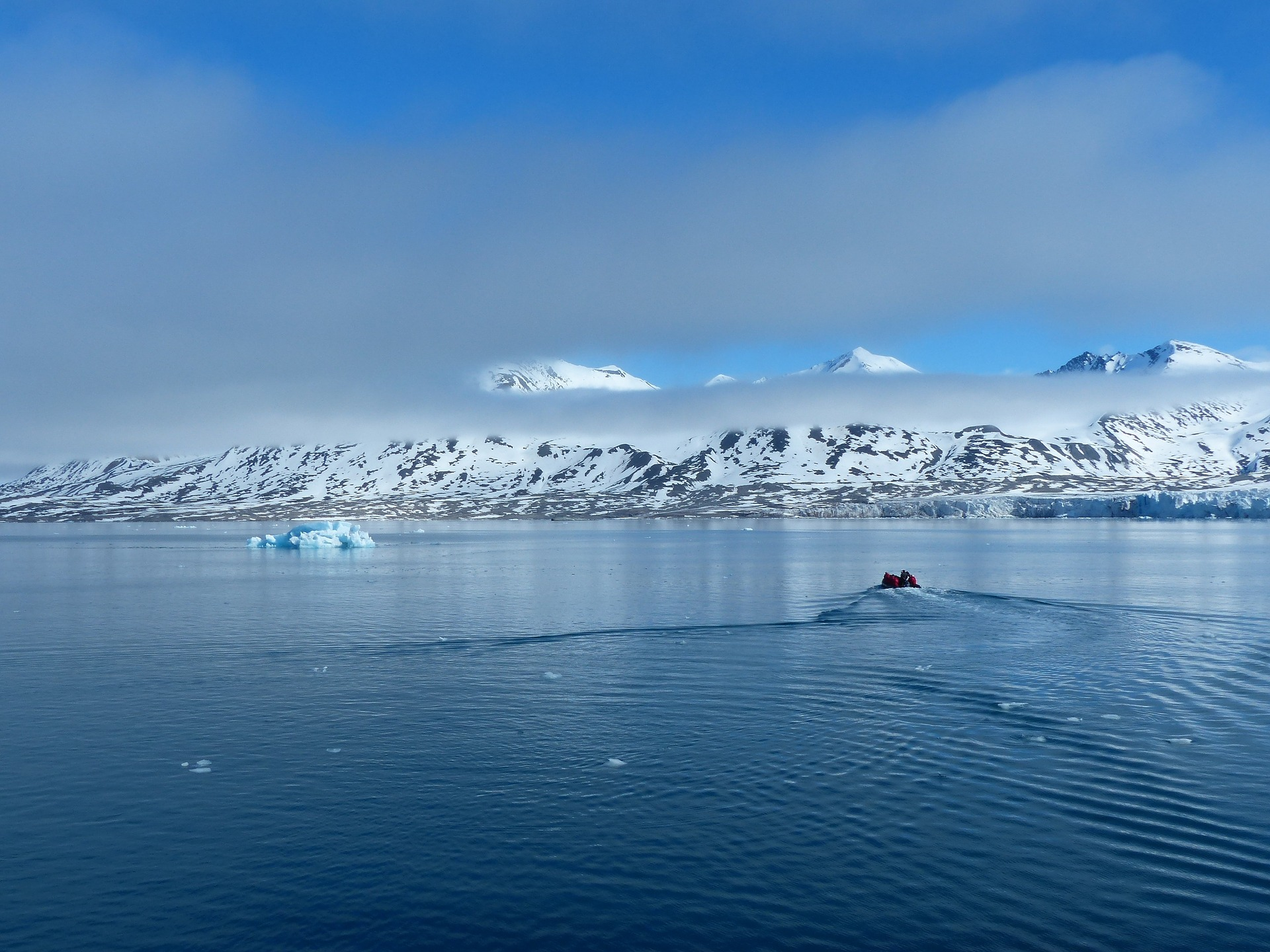 Expedition Nordwestspitzbergen - Bild