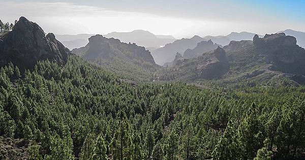 Kanarische Inseln - Bild 2
